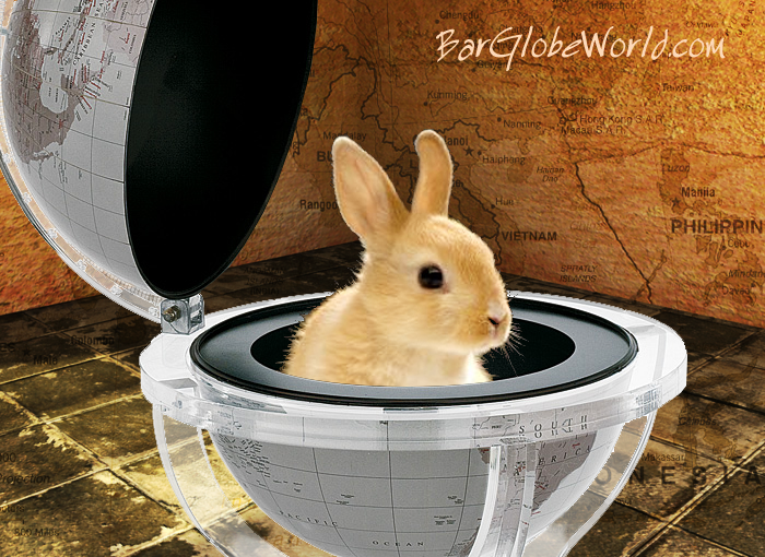 Barglobeworld.s signature image for a gift card of a globe with a rabbit in it